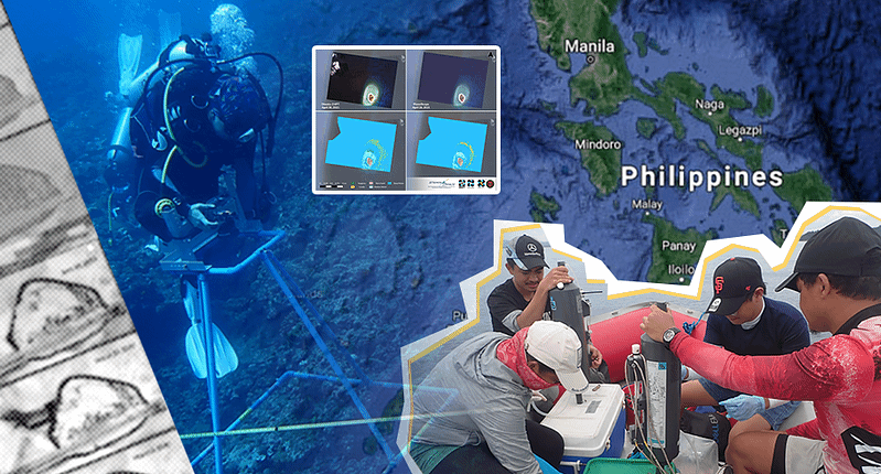 The diverse marine ecosystem of the WPS: Observations from space